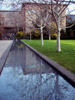 Melbourne Uni Reflections by moviegirl78