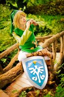 The Legend of Zelda - Cloverleaf by TrustOurWorldNow