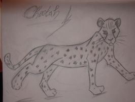 CUTE CHEETAH by SilverFox710
