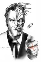 Two-Face by Caveatscoti