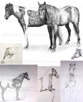 Traditional sketch examples by Whisperah
