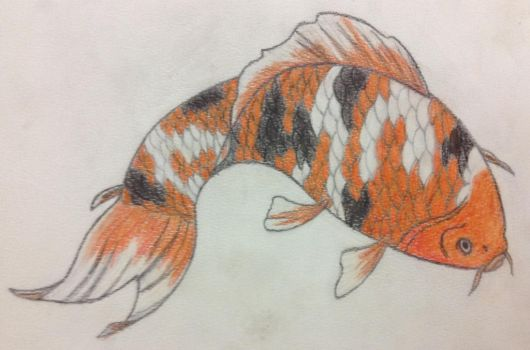 Koi Fish  by ALL-HAIL-MEGZY3