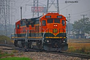 BNSF C40-8s Hodghins 0001 10-13-14 by eyepilot13