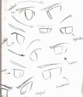 Random Warrior Cat Eyes by Applemist