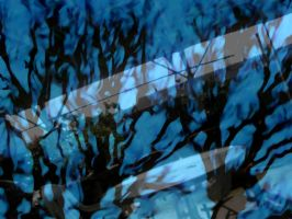 Blue Trees by Victor-pocket