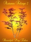 Autumn foliage 2 PNG Collection by kayshalady