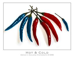 Hot and Cold by jerishoots