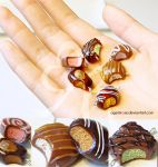Miniature Polymer Clay Chocolates I by AgentRose