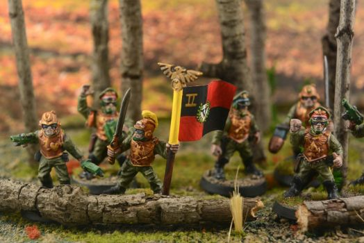 Imperial Guard Diorama 4 by GeneralCambronne