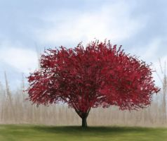 Red tree by RudolphEurich