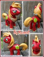 Eeyup another custom pony by HeyLookASign