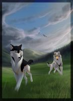 On The Way To The Unknown by Sharaiza