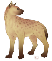Spotted Hyena by SailingBreezes