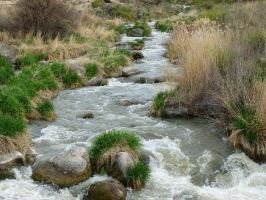 Snake River Canyon Tributary Creek by the-only-nighthawk
