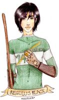 QUIDDITCH-Regulus Black by call-me-special
