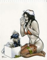 2012 X-Mas Pinup Completed by RichardCox