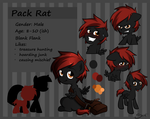 Reference Sheet: Pack Rat by secret-pony