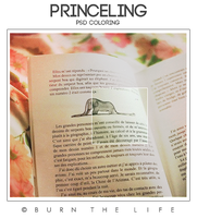 +Princeling [PSD Coloring] by Burn-the-life