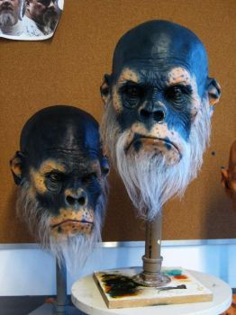 Ape's Head Painted2 by glaucolonghi