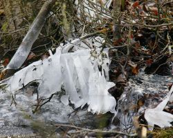 Frosted Creek by duncan-blues