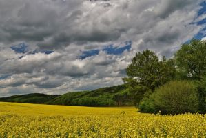 colours of may by Dieffi