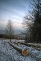 View from Krzyzowa by kubica