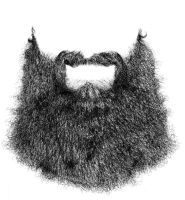 Beard by picasio