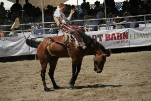 rodeo 9 by xbr0kendevotion