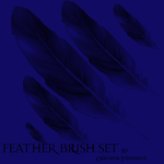 Feather Brushes by grayseer-thanquol