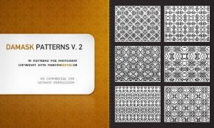 Damask Patterns Volume 2 by basstar
