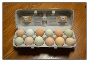 Our country eggs.800 0222, with story by harrietsfriend