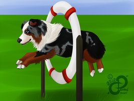 Hazel's Rum: NAK's Embracing the Fall Agility by PaintedCricket