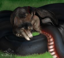 The wolf and snake by Shivik