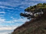 Aftermoon by peterpateman