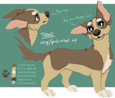 Tirnu reference sheet (update) by tirnu