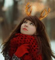 Winter antlers vol. 2 by Ledenec