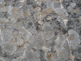 Stone Texture 09 by vl2r