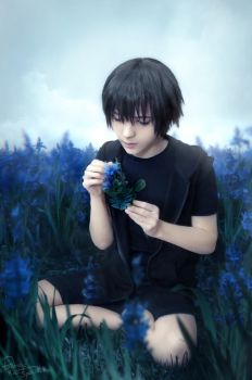 Final Fantasy XV - Noctis - Field of flowers by Krisild