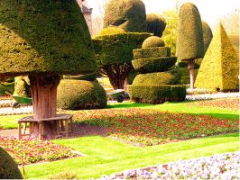Topiary Garden - Levens Hall - III by Paul-Francis