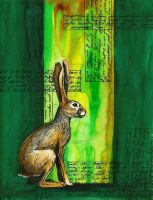 Jack Rabbit on Green by felixxkatt