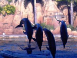 4 Dolphin Boat Jump by TheRolePlayingGame