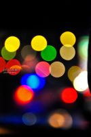 Season of Bokeh 7 by isangkilongkamera