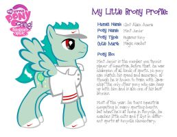 My little Brony Profiles3 by maryfgr23