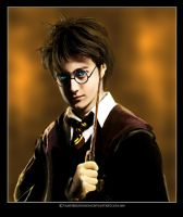 _Hary Potter_ by vampirekingdom