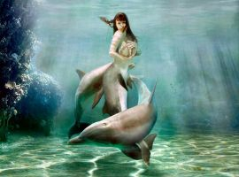 Mermaid Princess dolphin v1 by FueledbypartII