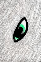 Wolf Eye Thing by WolfAdemius