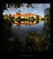 - Telc views - by UNexperienced