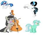 What is the same about these ponies? by laurenfriel04hotmail