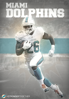 Miami-Dolphins-Poster by JamesSStudios