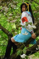 Haruhi: tree sitting by Stary-dragonlover
